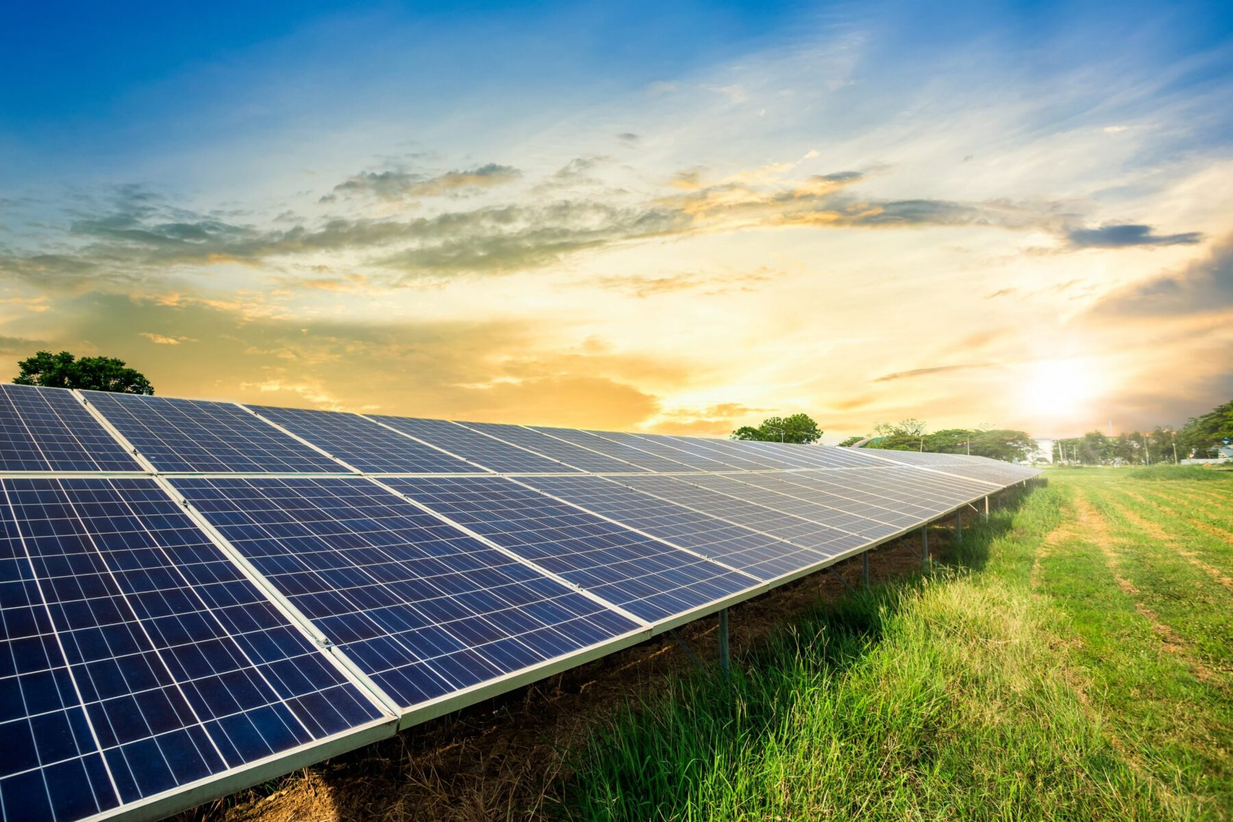 Windel Capital Partners with Canadian Solar